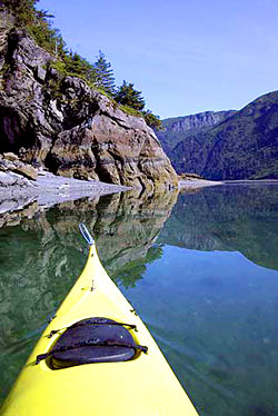 Alaska Sea Kayaking And Kayak Rentals In Sadie Cove Alaska